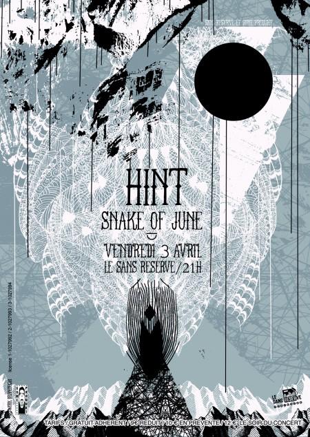 HINT snake of juneflyerweb